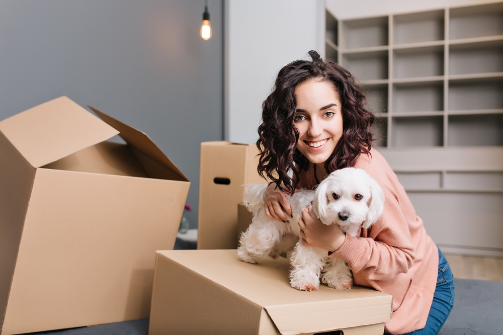 Tips for Moving With a Dog - Provide a Safe Space for Your Pup at Both Homes